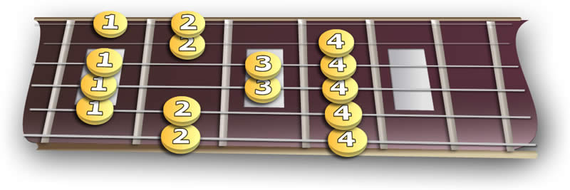 fretboard_majoR
